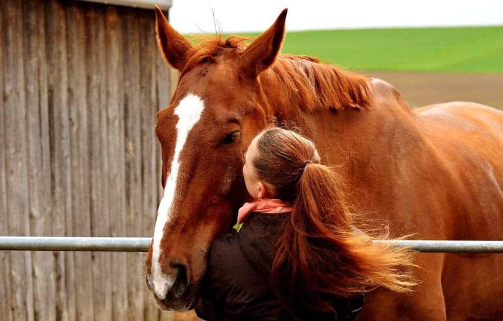 Liefde voor dieren